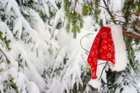 Christmas background with snow tree in red Santa hat.