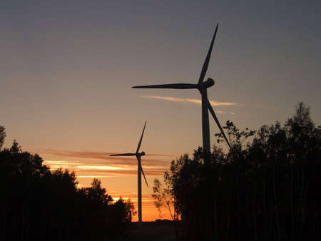 conservational: wind tourbines in the dusk