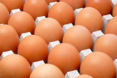 Fresh rural eggs packed into cardboard container photo