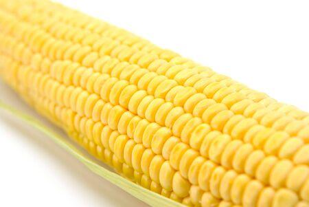 Corn on the cob isolated on white background photo
