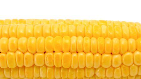 Fresh corn isolated on a white background photo
