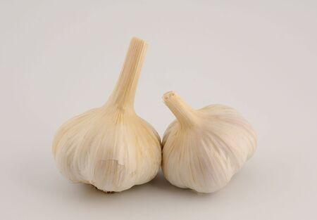 Head of garlic isolated on a white background photo