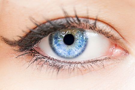 Weibliche blaue Augen extreme Nahaufnahme Detail. Makrobild des menschlichen Auges.