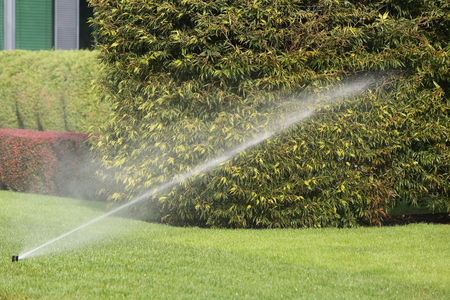 Irrigation System Watering the Garden