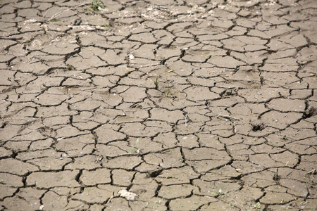 waterless: Dry riverbed mud that dried which is still wet Stock Photo