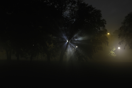 nightime: Silver light gleaming through trees making a star like shape in a misty night landscape Stock Photo
