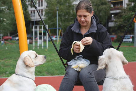 Older woman eating banana while her dogs watching at playground.