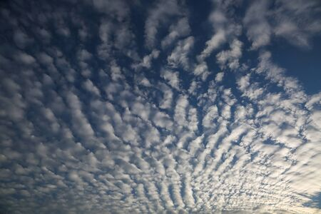 Texture of altocumulus shape clouds at sky on sunset. Stok Fotoğraf