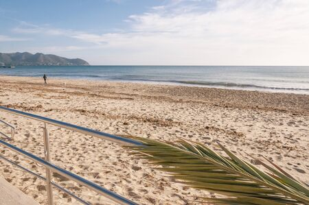 Palm leaf on top of a metal railing giving access to the beach of Cala Millor (island of Mallorca). Empty beach with remains of poseidonia and a woman on her back walking the dog Standard-Bild - 142652139