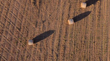 Aerial view of a rural field with large straw balls at sunset. Location of Campos, Island of Majorca, Spain Imagens
