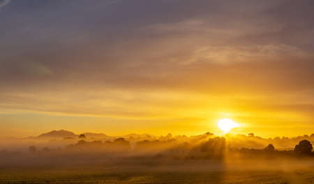 Sunrise with fog in a field with carob trees in the interior of the island of Mallorca, Spain Stok Fotoğraf - 160533984