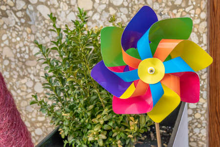 Close-up of a colored windmill outside with a green plant in the background Stok Fotoğraf