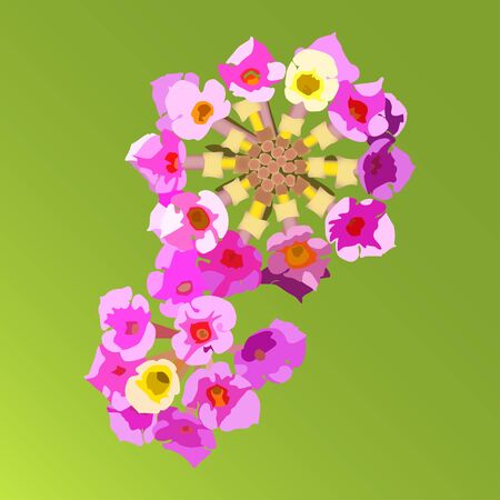 close up isolated: Multicolored bright flowers of Lantana Camara close up, isolated on green gradient background