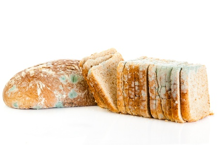 mouldy: moldy bread isolated on white background