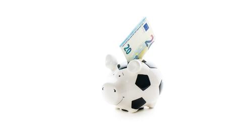 holydays: twenty euro in Piggybank isolated on white background. savings