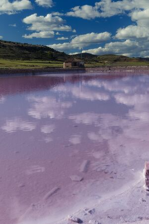 Pink salt basin in the front and green mountains in background with a clear blue sky.