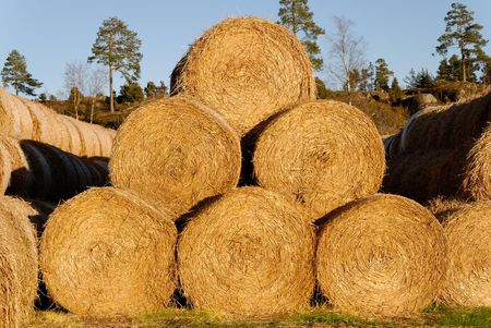 A pyramid of 6 hay bails, lit by low autumn sun.   Stock Photo - 3263736