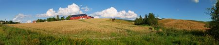 Panoramic view of a typical Norwegian farm with oats field, horses and a nice cloudscape. Composed from 16 individual shots.
