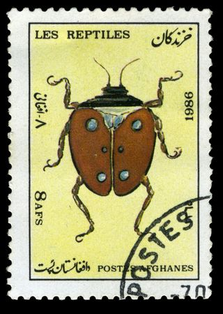 Afghan stamp from 1986 depicting a beetle