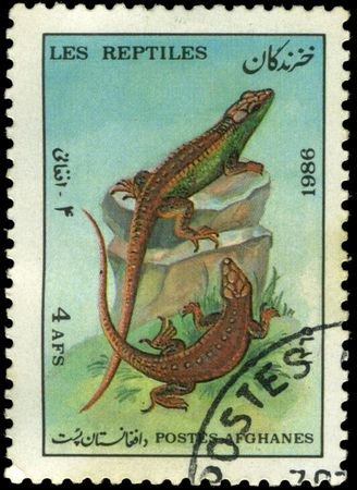 Afghan stamp from 1986 depicting a lizard