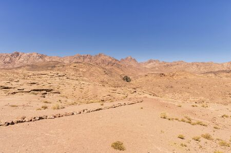 desert landscape, plain and mountains of red sandstone covered with sparse vegetation, several palm trees near an oasis, against a blue sky, Southern Sinai, Egypt Banco de Imagens