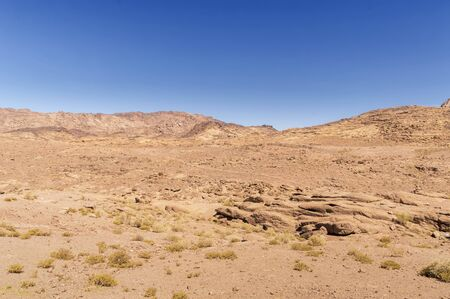 desert landscape, plain and mountains of red sandstone covered with sparse vegetations, against a blue sky, Southern Sinai, Egypt Banco de Imagens