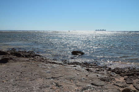 on the shore of the Red Sea, a man in the water in the background, a dry cargo ship floating on the sea in the horizon, against the blue sky. Egypt