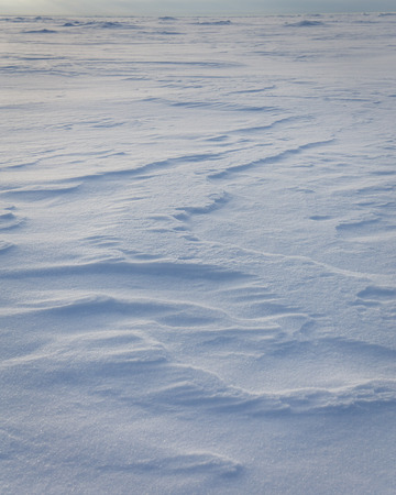 Wind shapes of snow on froozen sea. Russia
