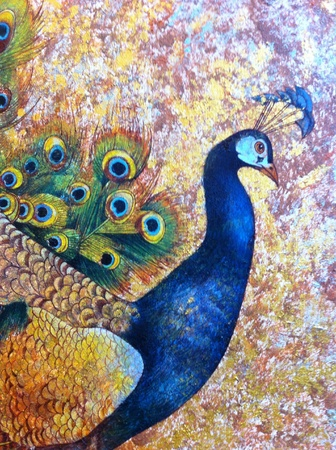 art: Male peacock painting. Stock Photo