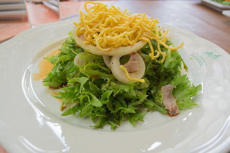 shreded: Green vegetable salad with shreded chicken meat ,deep fried noodle and fresh onion ring serve with Thai style dressing.
