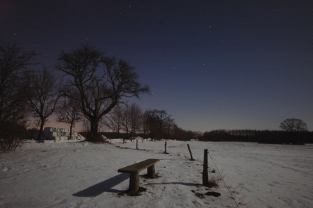 Ghostly snow landscape seen in moonlight. Reklamní fotografie