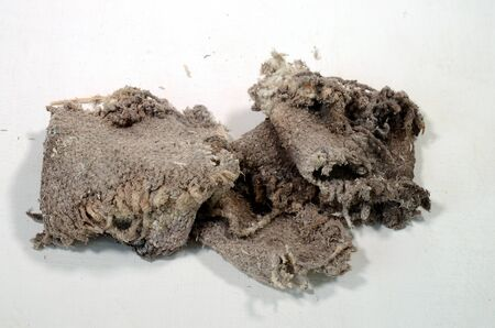 Piece of asbestos fabric formerly used for fireproof isolation. As can be seen the asbestos fabric has already dropped dust on the background surface despite very careful handling.