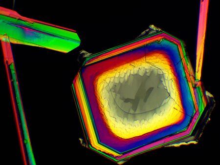 Thin layer of crystals of different chemicals seen in a microscope with polarized light.