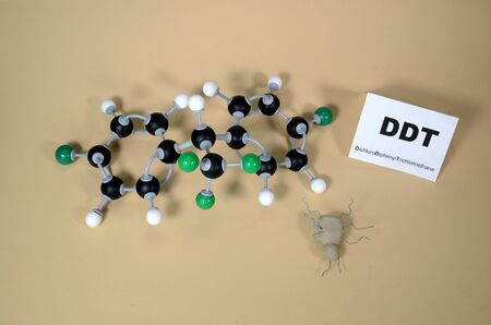 Molecule model of DDT - Dichlorodiphenyltrichloroethan with illustrative dead bug. White is Hydrogen, black is Carbon, and Green is Chlorine.