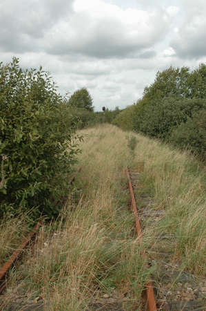 Abandoned overgrown railway with a forgotten signal still showing red light.
