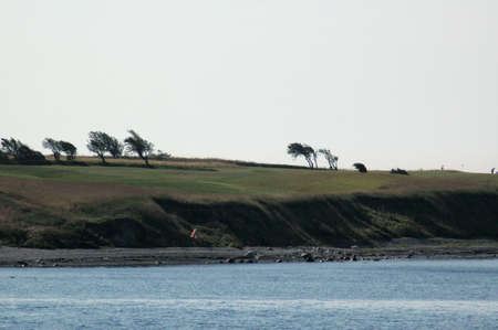 Weather beaten trees marked by a one way wind in a flat landscape seen from a ship. Stockfoto - 152039405