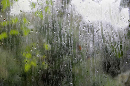 Raindrops on a window, with green leaves outside.