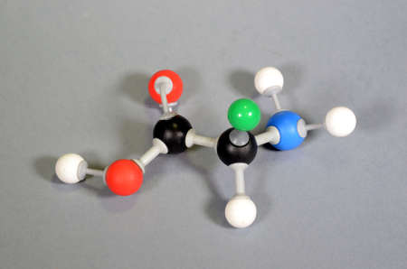 Molecule model of Amino acid. Black is carbon, red is oxygen, white is hydrogen, blue is nitrogen, and green represents a rest goup that can have numerous appearences.