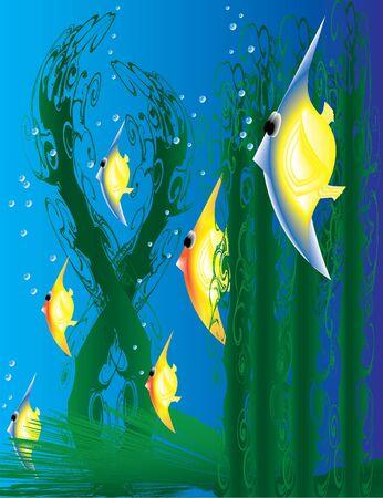 fishy: Something Fishy Stock Photo