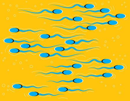 espermatozoides: Nado de esperma (ilusi�n de movimiento)  Vectores