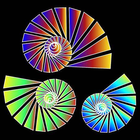 Nautilus Trio Zdjęcie Seryjne - 10147546