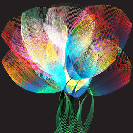Tulipes  Banque d'images - 56705073