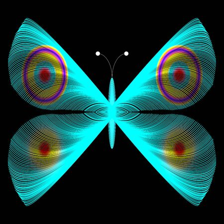 insect flies: Blue Butterfly Stock Photo
