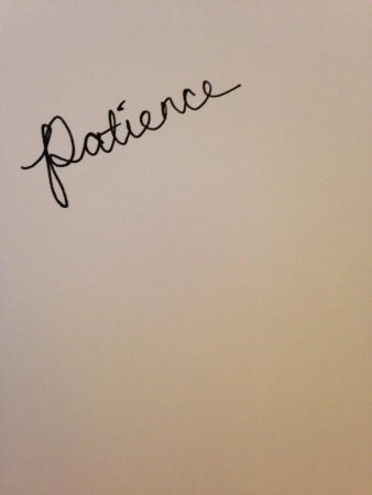 patience: Patience in cursive on white  Stock Photo