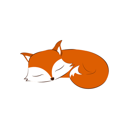 Sleeping fox on white background