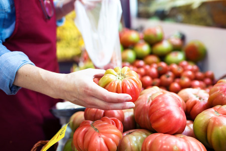 Close-up of saleswoman selecting fresh tomatoes and preparing for working day in health grocery shop.
