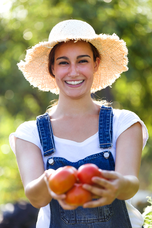 Portrait of beautiful young smiling woman harvesting fresh tomatoes from the garden and showing at the camera.