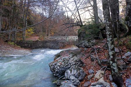 River in Ordesa National Park, Pyrenees, Huesca, Aragon, Spain 版權商用圖片