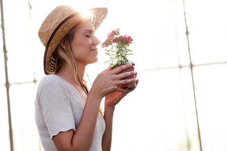 Shot of young beautiful woman smelling flowers in the greenhouse