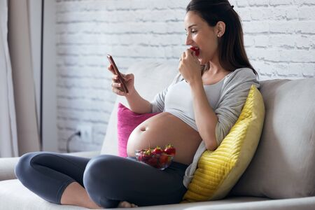 Shot of beautiful pregnant young woman using her mobile phone while eating strawberries on sofa at home.